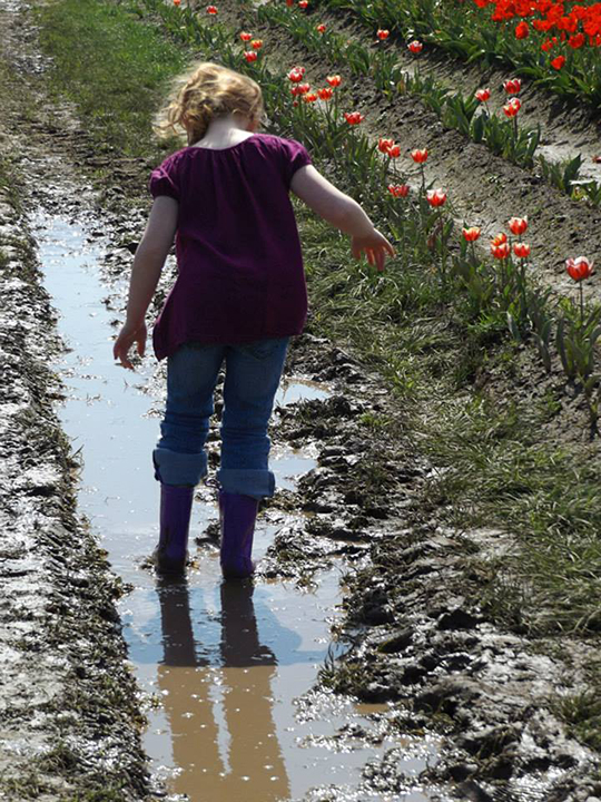 Playing in the mud-Wooden Shoe