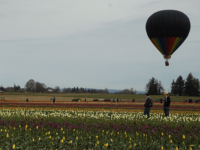 Wooden Shoe's hot air balloon rides