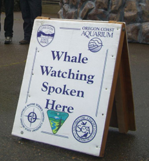 WhaleWatchSpokenSignSmall