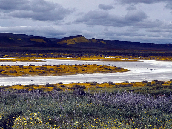 Carrizo-Plain-Soda-Lake