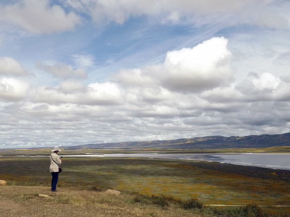 Soda-Lake-panorama-Carrizo-Plain
