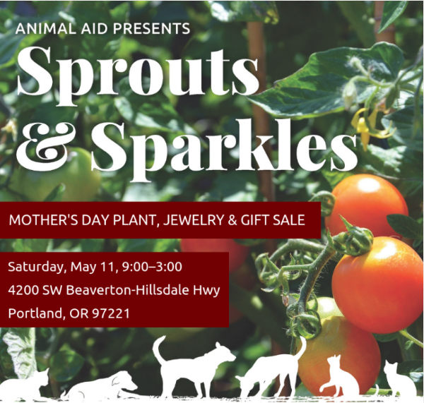 Sprouts-and-Sparkles-poster-2019