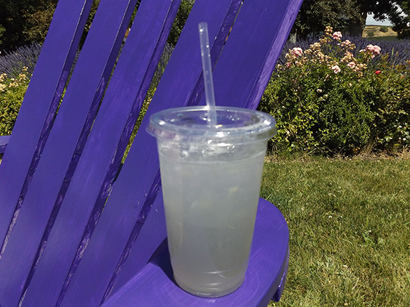 lavender-lemonade-Selah-Ridge-Lavender-Farm