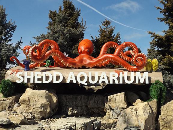 Shedd-Aquarium-sign-Chicago