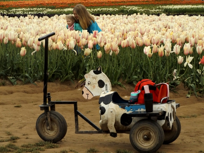 mother-and-daughter-in-the-tulips