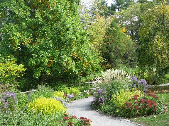 Acton-Arboretum5