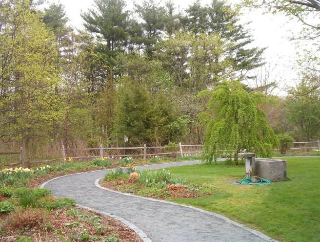Acton-Arboretum8