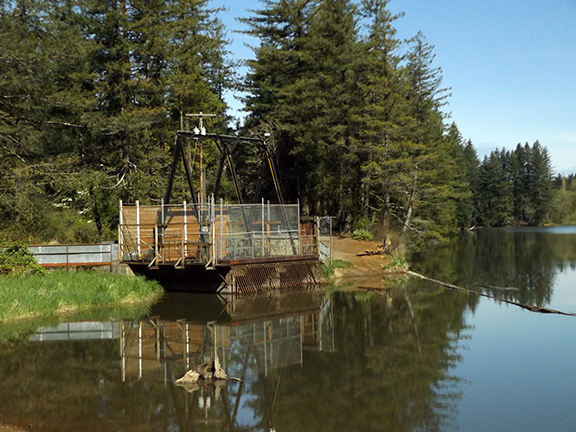 Dam-Number-2-Lacamas-Regional-Park2