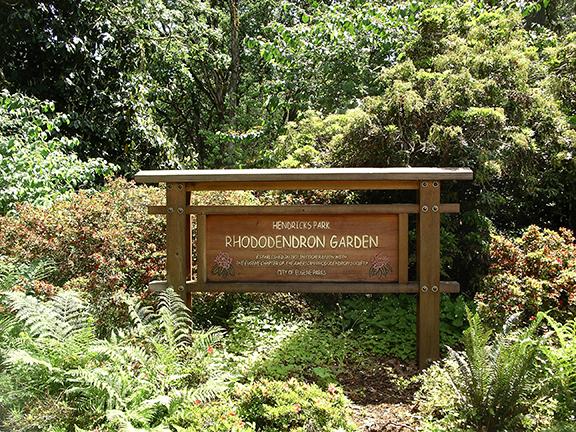 Hendricks-Park-Rhododendron-Garden-Eugene