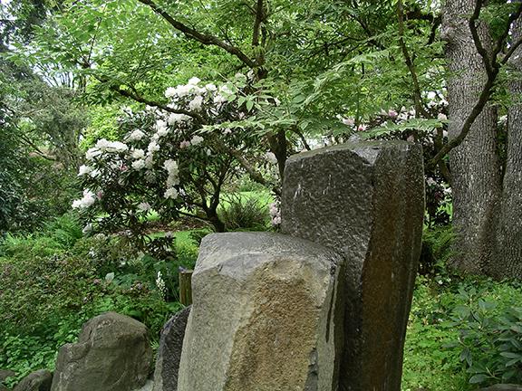Hendricks-Park-Rhododendron-Garden-Eugene10