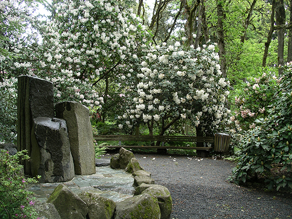 Hendricks-Park-Rhododendron-Garden-Eugene11
