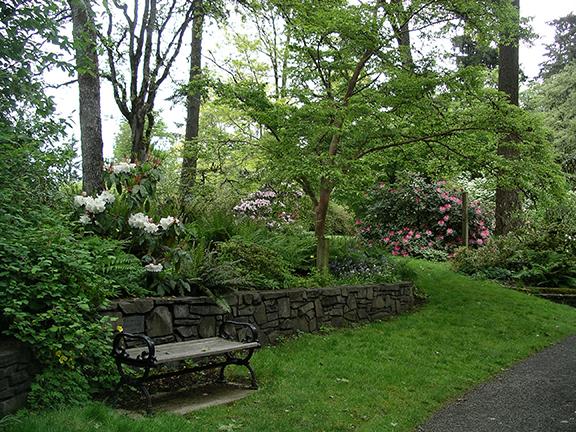 Hendricks-Park-Rhododendron-Garden-Eugene13