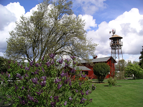 Hulda-Klager-Lilac-Gardens-Woodland11