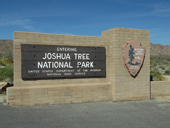 Joshua-Tree-National-Park2