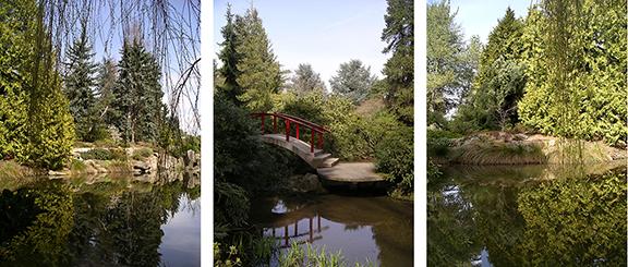 Kubota-Garden-spring-Seattle11
