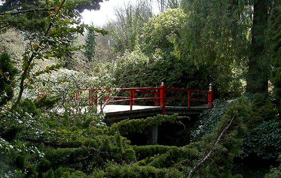 Kubota-Garden-spring-Seattle6