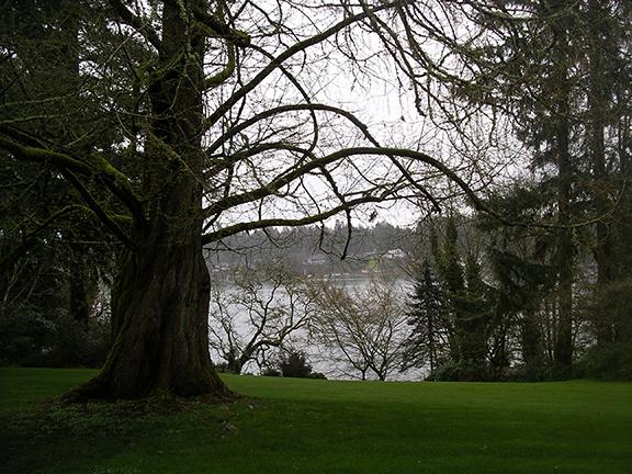 Lakewold-Gardens7