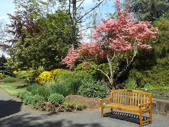 Oregon-Garden-Silverton11