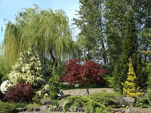 Oregon-Garden-Silverton21