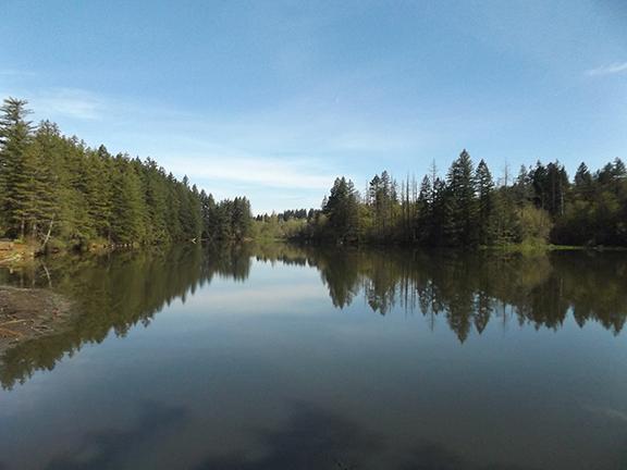 Round-Lake-Lacamas-Regional-Park2