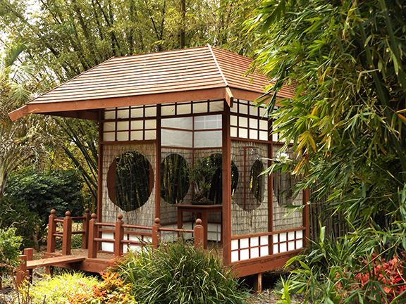 San-Diego-Botanical-Garden24