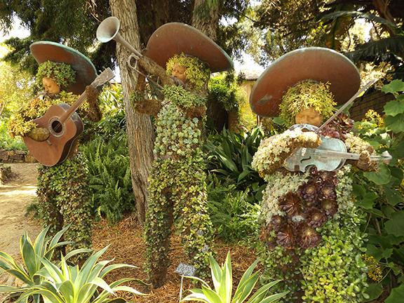 San-Diego-Botanical-Garden4