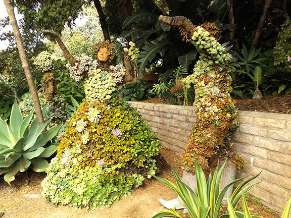 San-Diego-Botanical-Garden6