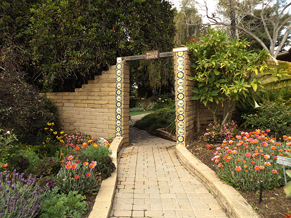 San-Diego-Botanical-Garden9