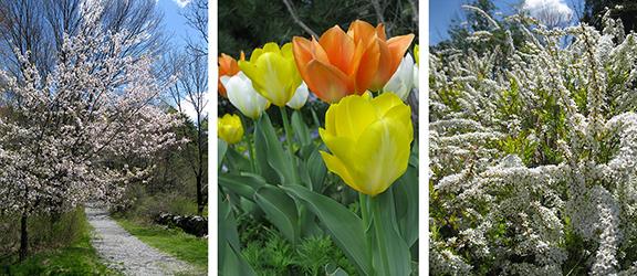 Tower-Hill-Botanic-Garden15