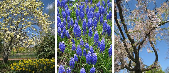 Tower-Hill-Botanic-Garden16