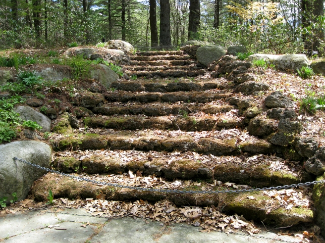 Tower-Hill-Botanic-Garden4