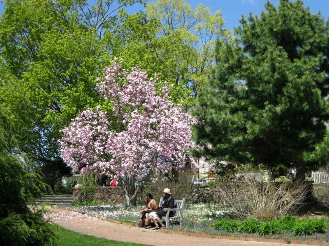Tower-Hill-Botanic-Garden8