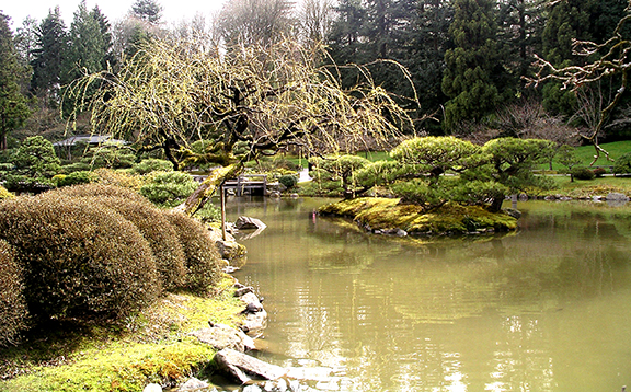 Washington-Park-Arboretum-Seattle-spring