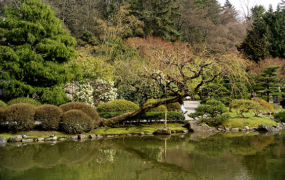 Washington-Park-Arboretum-Seattle-spring2