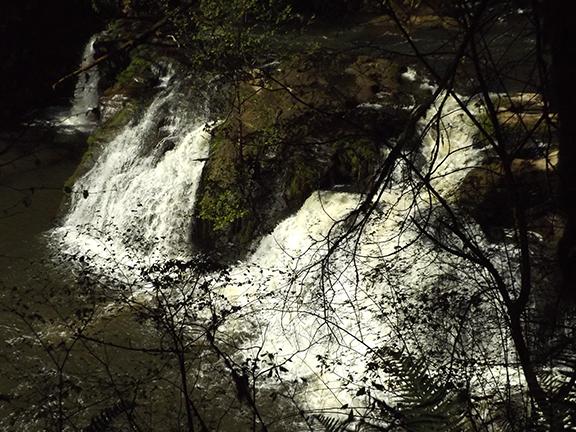 Woodburn-Falls-Lacamas-Regional-Park