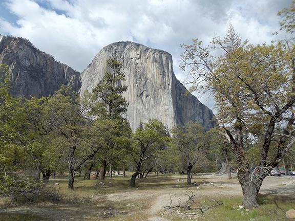 Yosemite-National-Park14