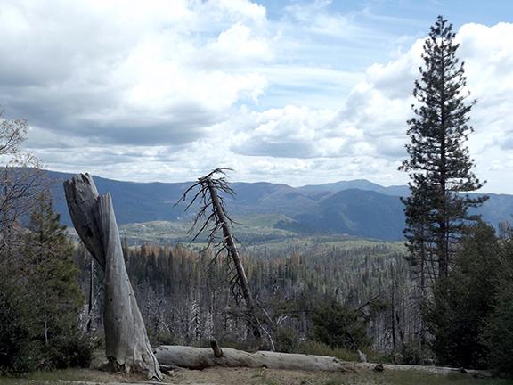 Yosemite-National-Park4