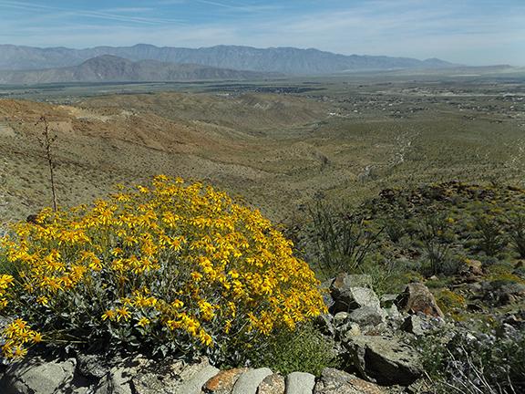 Anza-Borrego-Desert-State-Park21