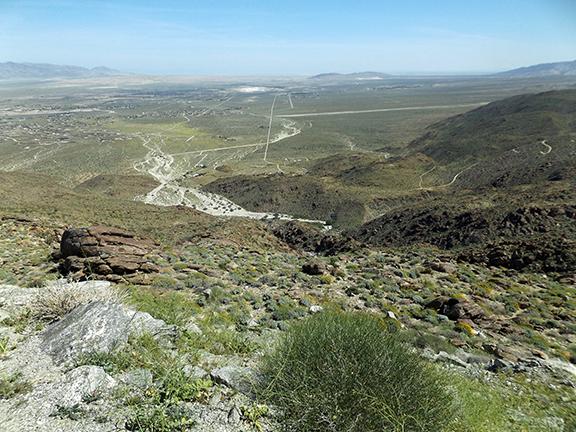 Anza-Borrego-Desert-State-Park4