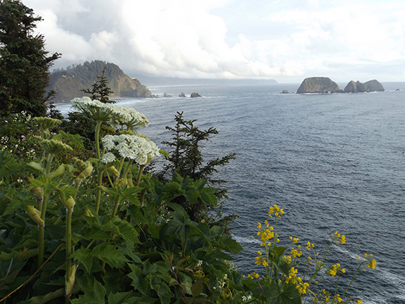 Cape-Meares-Lighthouse-and-Scenic-Viewpoint8