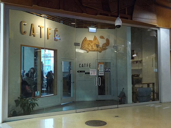 Catfe-Vancouver-British-Columbia2