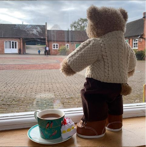 George-the-Teddy-rosegardentea-bear-hunt
