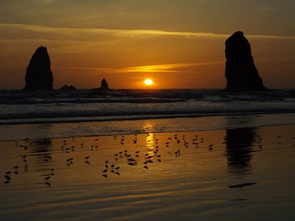 Haystack Rock-Cannon Beach17