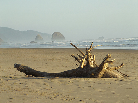 Haystack Rock-Cannon Beach5