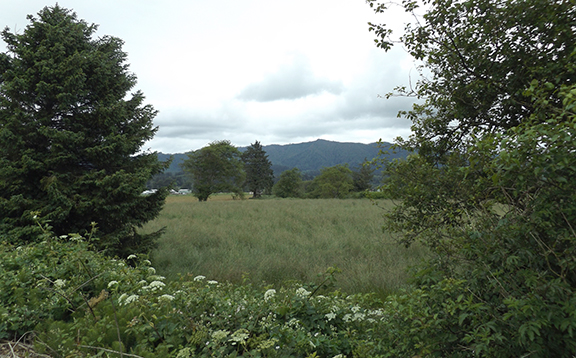 Oregon-Coast-Railriders-Bay-City13