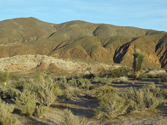 Red-Rock-Canyon-State-Park5