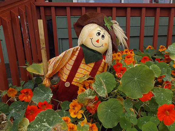 scarecrow-Sand-Dollar-Restaurant-and-Lounge-Rockaway-Beach-Oregon