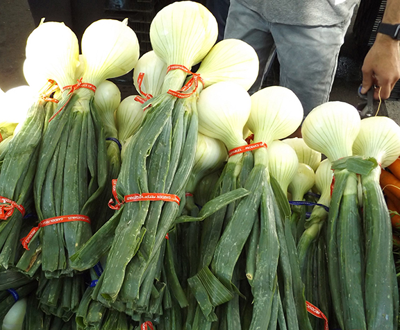 Vancouver-Farmers-Market-onions