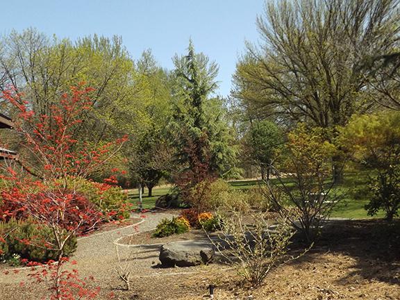 Yakima-Area-Arboretum10