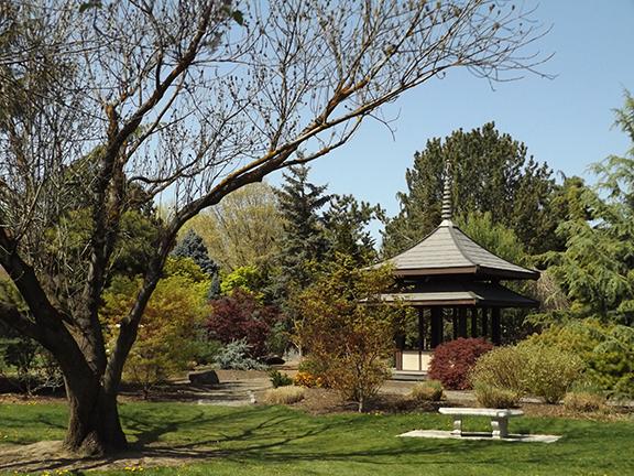 Yakima-Area-Arboretum8
